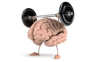 cerveau-et-perte-de-poids