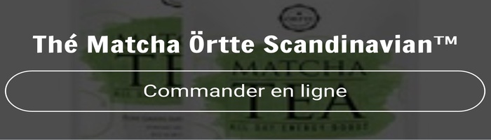 commander-the-ortte-scandinavian