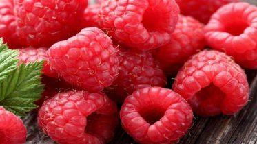 raspberry-ketone-ou-cetone-de-framboise