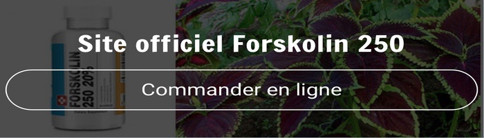 site-officiel-forskolin-250