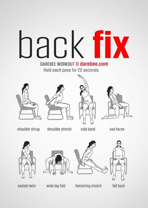 deroulement-de-lexercice-physique-muscles-du-dos