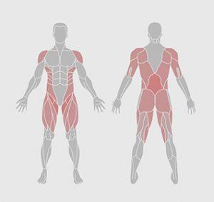 caracteristiques-exercice-physique-yoga-chaque-jour