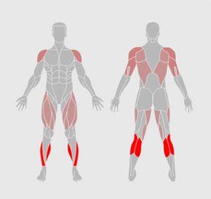 muscles-exercice-physique-mini-entrainement-de-saut