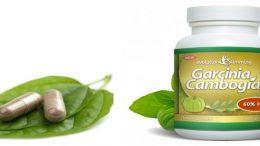 garcinia-cambogia-calcium-potassium
