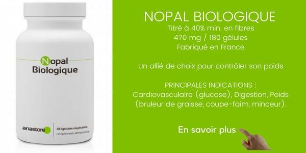 nopal-biologique-anastore