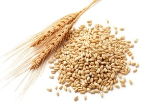 allergie-alimentaire-au-ble