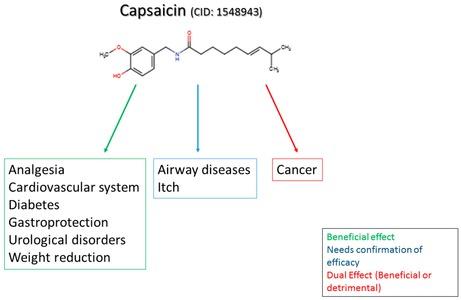 capsaicin-et-maladies
