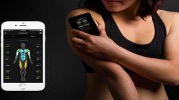 comment-mesurer-le-pourcentage-de-graisse-corporelle