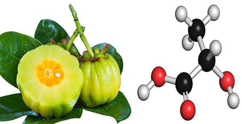 acide-hydroxycitrique-et-perte-de-poids